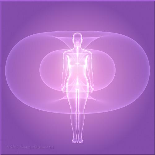 Toroidal Human Energy Field